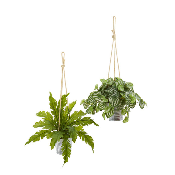 26 Watermelon Peperomia and Fern Artificial Plant in Hanging Bucket Set of 2 - SKU #8890-S2