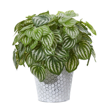 14 Watermelon Peperomia Artificial Plant in White Embossed Planter Real Touch - SKU #8897