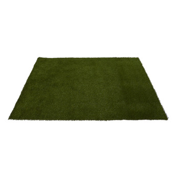 6 x 8 Artificial Professional Grass Turf Carpet UV Resistant Indoor/Outdoor - SKU #8908