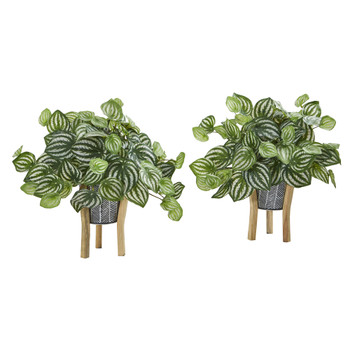 14 Watermelon Peperomia Artificial Plant in Tin Planter with Legs Real Touch Set of 2 - SKU #8923-S2