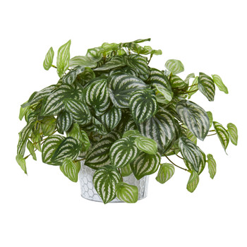 13 Watermelon Peperomia Artificial Plant in Embossed White Planter Real Touch - SKU #8941