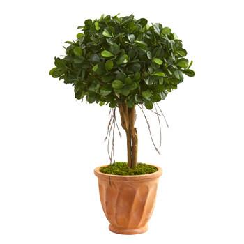 3 Ficus Artificial Tree in Terra Cotta Planter - SKU #9064