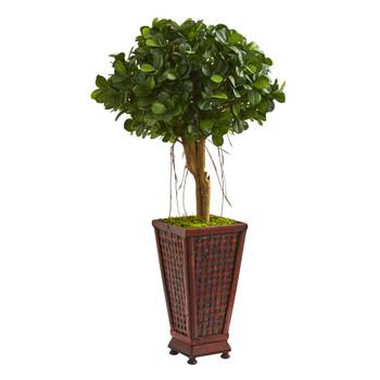 3.5 Ficus Artificial Tree in Classic Decorative Planter - SKU #9065