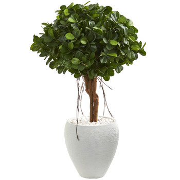 39 Ficus Artificial Tree in White Planter - SKU #9066