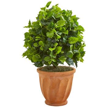 2.5 Ficus Artificial Tree in Terra Cotta Planter - SKU #9094