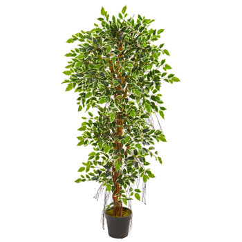 5 Elegant Ficus Artificial Tree - SKU #9131