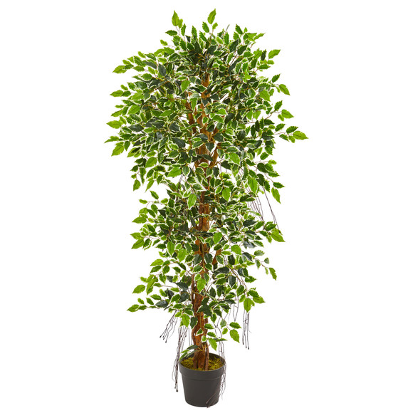 5 Elegant Ficus Artificial Tree - SKU #9131
