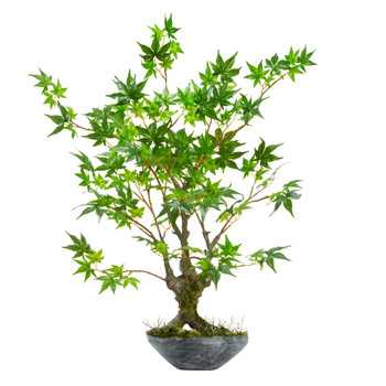 30 Maple Bonsai Artificial Tree in Planter - SKU #9178