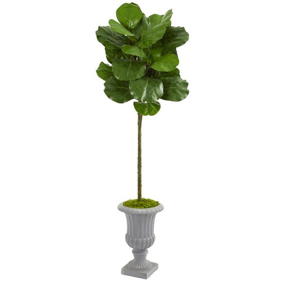63 Fiddle Leaf Artificial Tree in Decorative Urn - SKU #9218