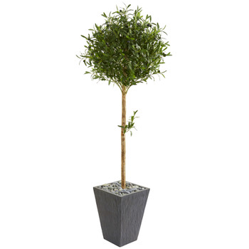 5.5 Olive Topiary Artificial Tree in Slate Planter - SKU #9230