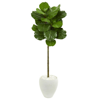 5 Fiddle Leaf Artificial Tree in White Planter - SKU #9261