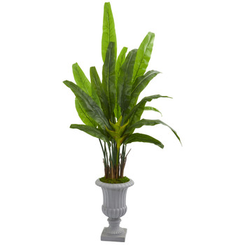 5.5 Travelers Palm Artificial Tree in Gray Urn - SKU #9272