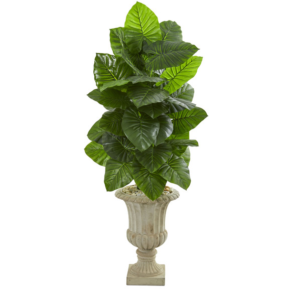 5 Taro Artificial Plant in Sand Finished Urn - SKU #9275
