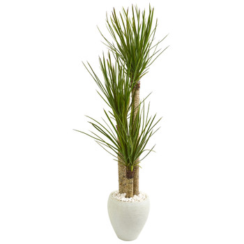 5.5 Yucca Artificial Tree in White Planter - SKU #9304