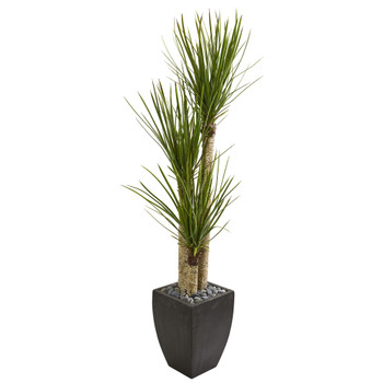 63 Yucca Artificial Tree in Black Planter - SKU #9305