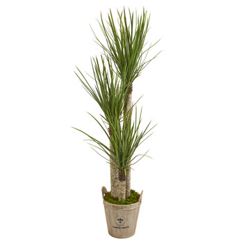 5 Yucca Artificial Tree in Farmhouse Planter - SKU #9306