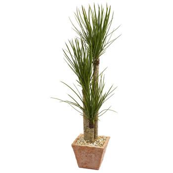 5 Yucca Artificial Tree in Terra Cotta Planter - SKU #9311