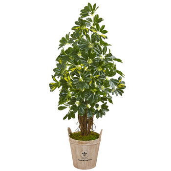 4.5 Schefflera Artificial Tree in Farmhouse Planter - SKU #9327