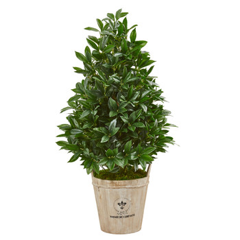 39 Bay Leaf Cone Topiary Artificial Tree in Farmhouse Planter - SKU #9363