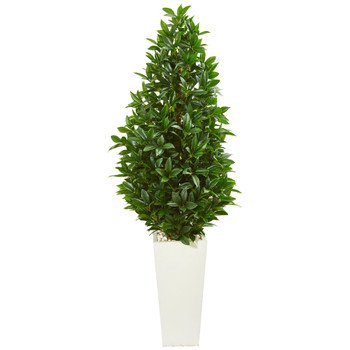 63 Bay Leaf Cone Topiary Artificial Tree in White Planter UV Resistant Indoor/Outdoor - SKU #9368