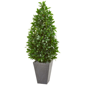 57 Bay Leaf Cone Topiary Tree in Slate Planter UV Resistant Indoor/Outdoor - SKU #9369