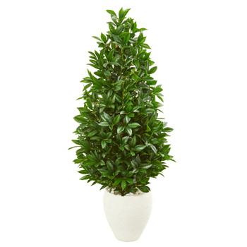 4.5 Bay Leaf Cone Topiary Artificial Tree UV Resistant in White Planter Indoor/Outdoor - SKU #9371