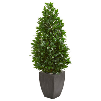 56 Bay Leaf Cone Topiary Artificial Tree UV Resistant in Black Planter Indoor/Outdoor - SKU #9372