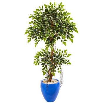 4.5 Variegated Ficus Artificial Tree in Blue Planter - SKU #9386