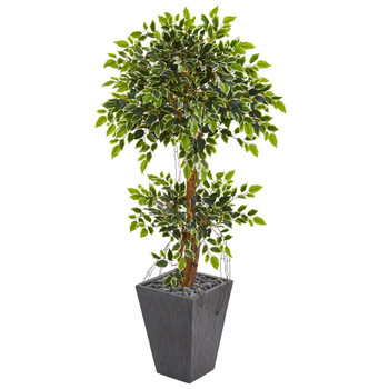 5 Variegated Ficus Artificial Tree in Slate Planter - SKU #9387