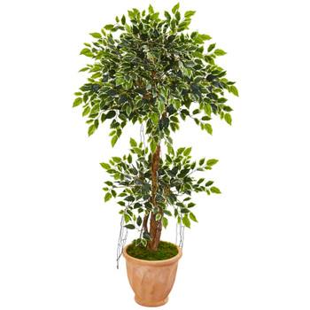 53 Variegated Ficus Artificial Tree in Terra Cotta Planter - SKU #9390