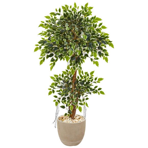 55 Variegated Ficus Artificial Tree in Sandstone Planter - SKU #9391