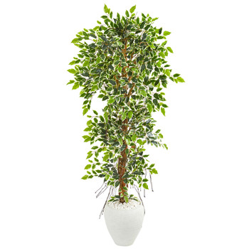 5.5 Elegant Ficus Artificial Tree in White Planter - SKU #9407