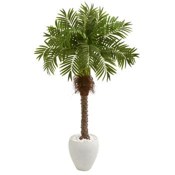 63 Robellini Palm Artificial Tree in White Planter - SKU #9428