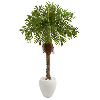 63 Robellini Palm Artificial Tree in White Planter - SKU #9428