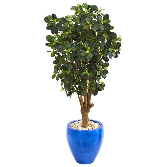 50 Panda Ficus Artificial Tree in Blue Planter - SKU #9506