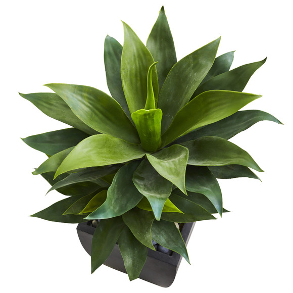 37 Double Agave Succulent Artificial Plant in Black Planter - SKU #9520 - 2