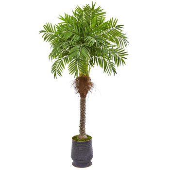 71 Robellini Palm Artificial Tree in Decorative Planter - SKU #9555