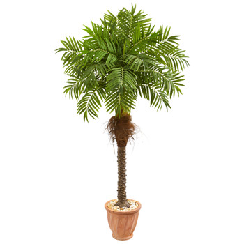 68 Robellini Palm Artificial Tree in Terra Cotta Planter - SKU #9557