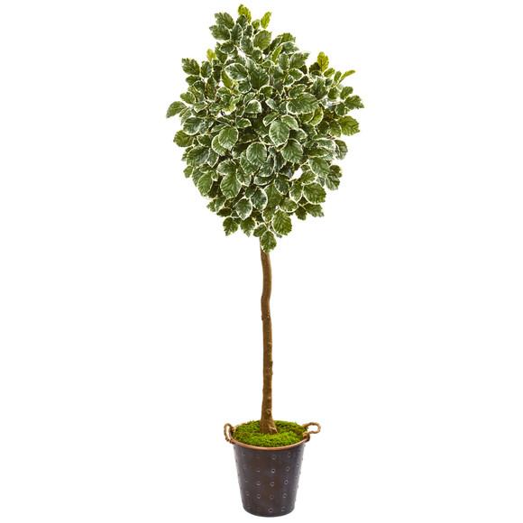 77 Variegated Aralia Artificial Tree in Metal Planter - SKU #9563