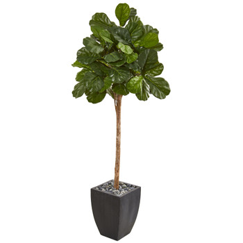 71 Fiddle Leaf Fig Artificial Tree in Black Planter - SKU #9577
