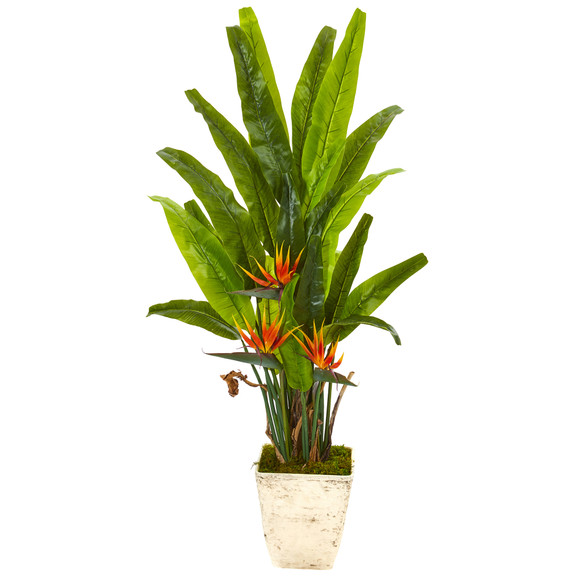 59 Bird of Paradise Artificial Plant in Country White Planter - SKU #9587