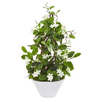 24 Stephanotis Artificial Climbing Plant in White Planter - SKU #9593