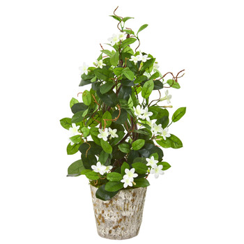 25 Stephanotis Artificial Climbing Plant in Weathered Planter - SKU #9595