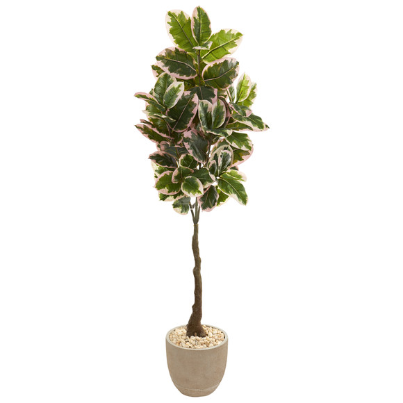 70 Variegated Rubber Leaf Artificial Tree in Sandstone Planter Real Touch - SKU #9674