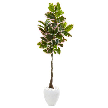 69 Variegated Rubber Leaf Artificial Tree in White Planter Real Touch - SKU #9675
