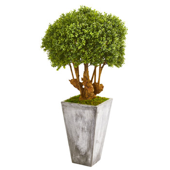 51 Boxwood Artificial Topiary Tree in Cement Planter Indoor/Outdoor - SKU #9771