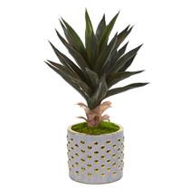 21 Agave Artificial Plant in Designer Planter - SKU #9776