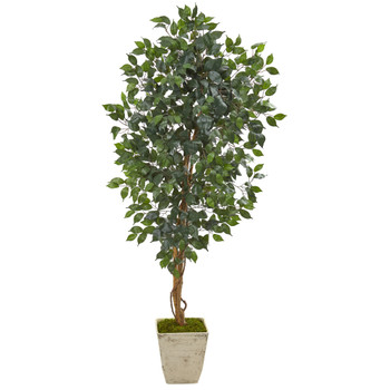 65 Ficus Artificial Tree in Country White Planter - SKU #9857