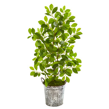 37 Mini Ficus Artificial Tree in White Washed Vintage Metal Pail - SKU #9921