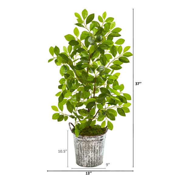 37 Mini Ficus Artificial Tree in White Washed Vintage Metal Pail - SKU #9921 - 1